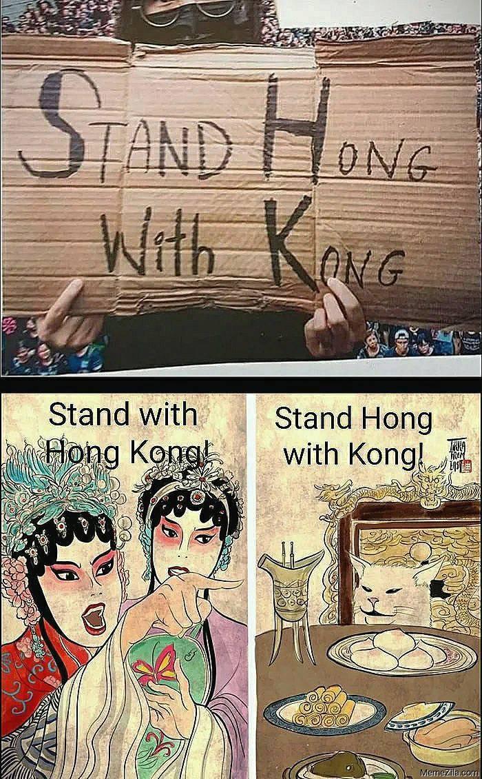 Stand Hong with Kong Stand with Hong Kong meme