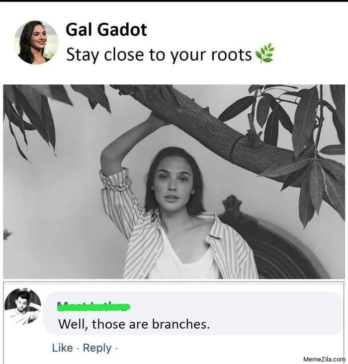 Stay close to your roots Well those are branches meme