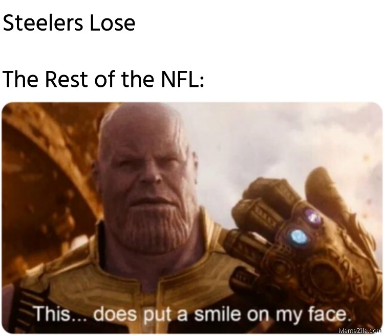 Steelers Lose The Rest of the NFL This does put a smile on my face meme