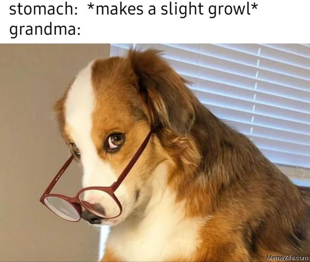 Stomach: makes a slight growl Meanwhile Grandma meme