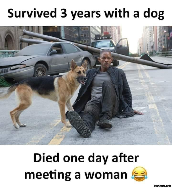 Survived 3 years with a dog but died one day after meeting a woman meme