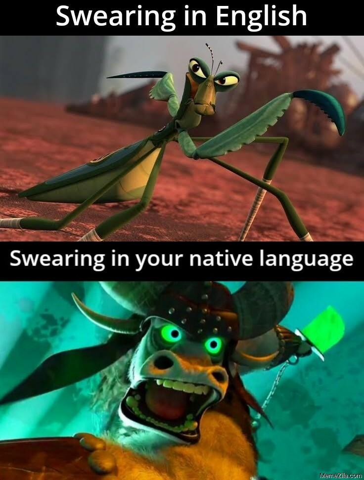 Swearing in English vs Swearing in native language meme