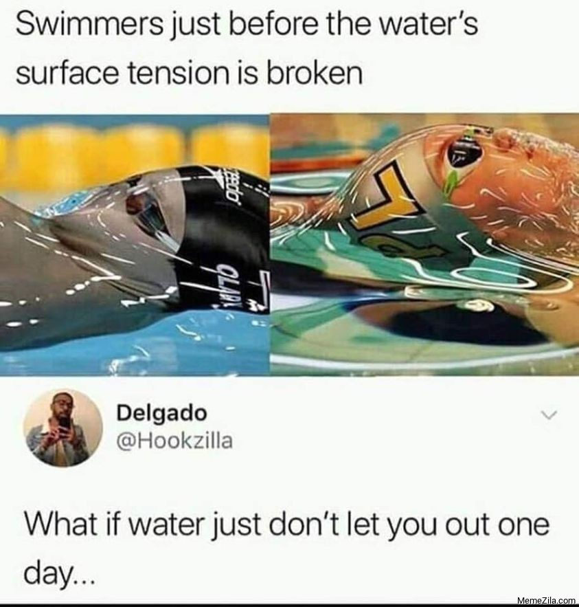 Swimmers just before the waters surface tension is broken What important just dont let you out one day meme