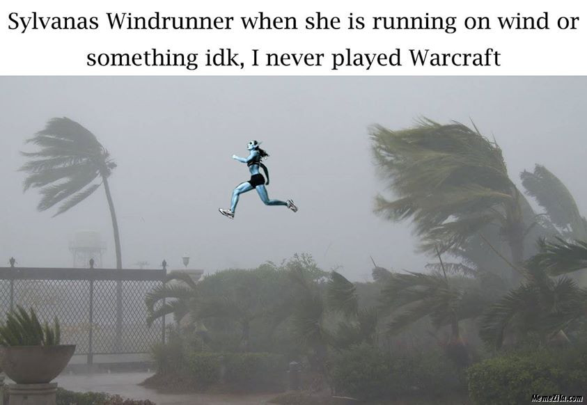 Sylvester windrunner when she is running on wind or something idk I never played minecraft meme