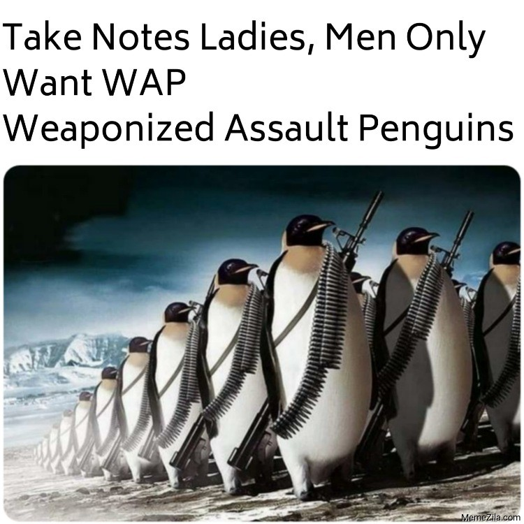 Take notes ladies men only want WAP Weaponized Assault Penguins meme