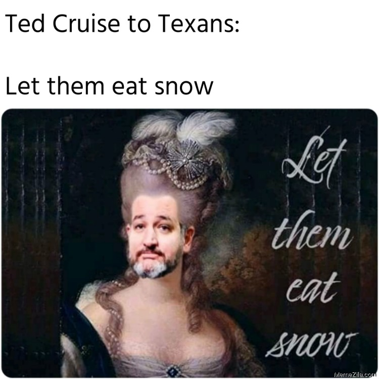 Ted Cruise to Texans Let them eat snow meme