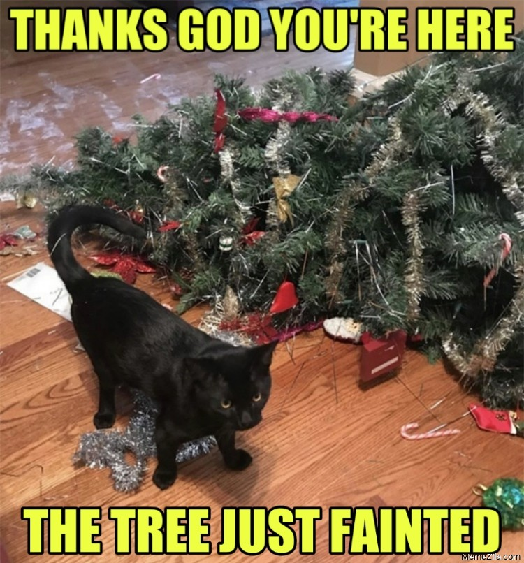 Thanks god you are here The tree just fainted meme