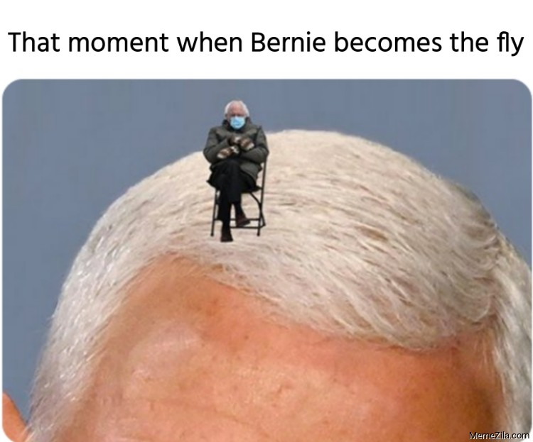 That moment when Bernie becomes the Pence fly meme