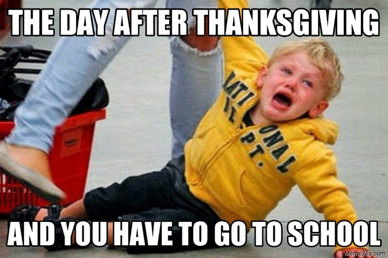 The day after thanksgiving and you have to go to school meme