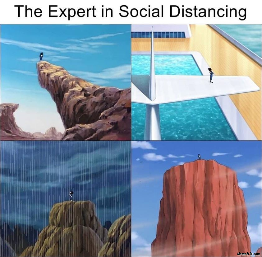 The experts in social distancing meme