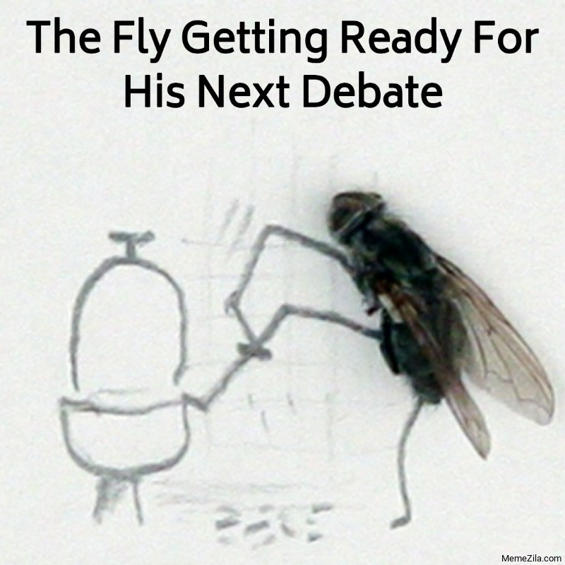 The fly getting ready for his next debate meme