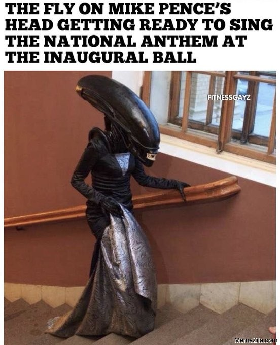The fly getting ready to sing the national anthem at the inaugural ball meme