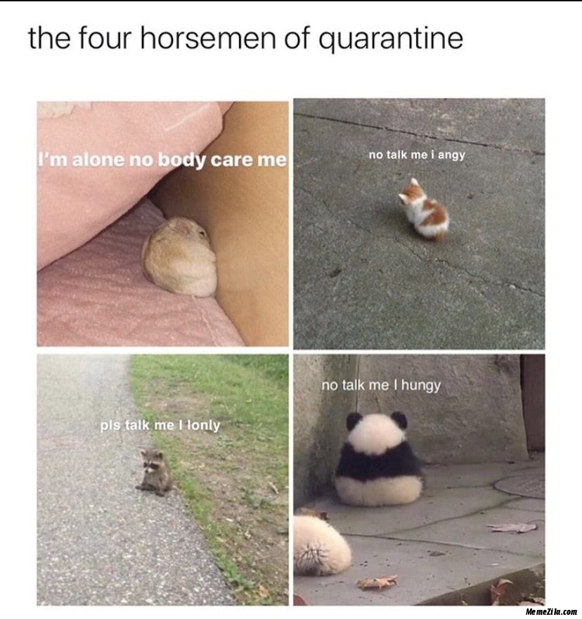 The four horsemen of quarantine meme