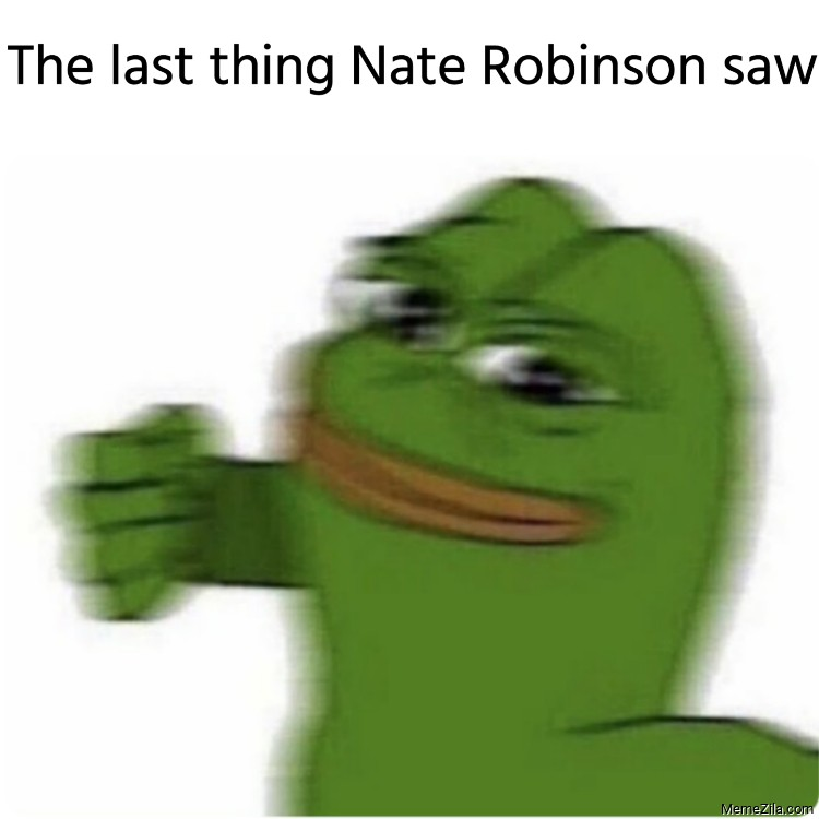 The last thing Nate Robinson saw meme