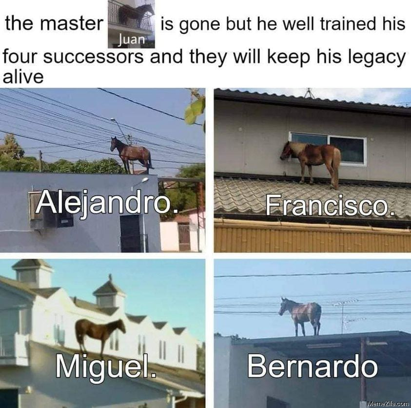The master juan has gone but he well trained his four successors meme