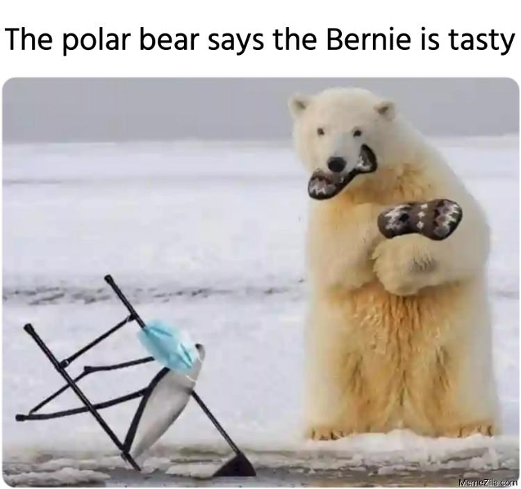 The polar bear says the Bernie is tasty meme