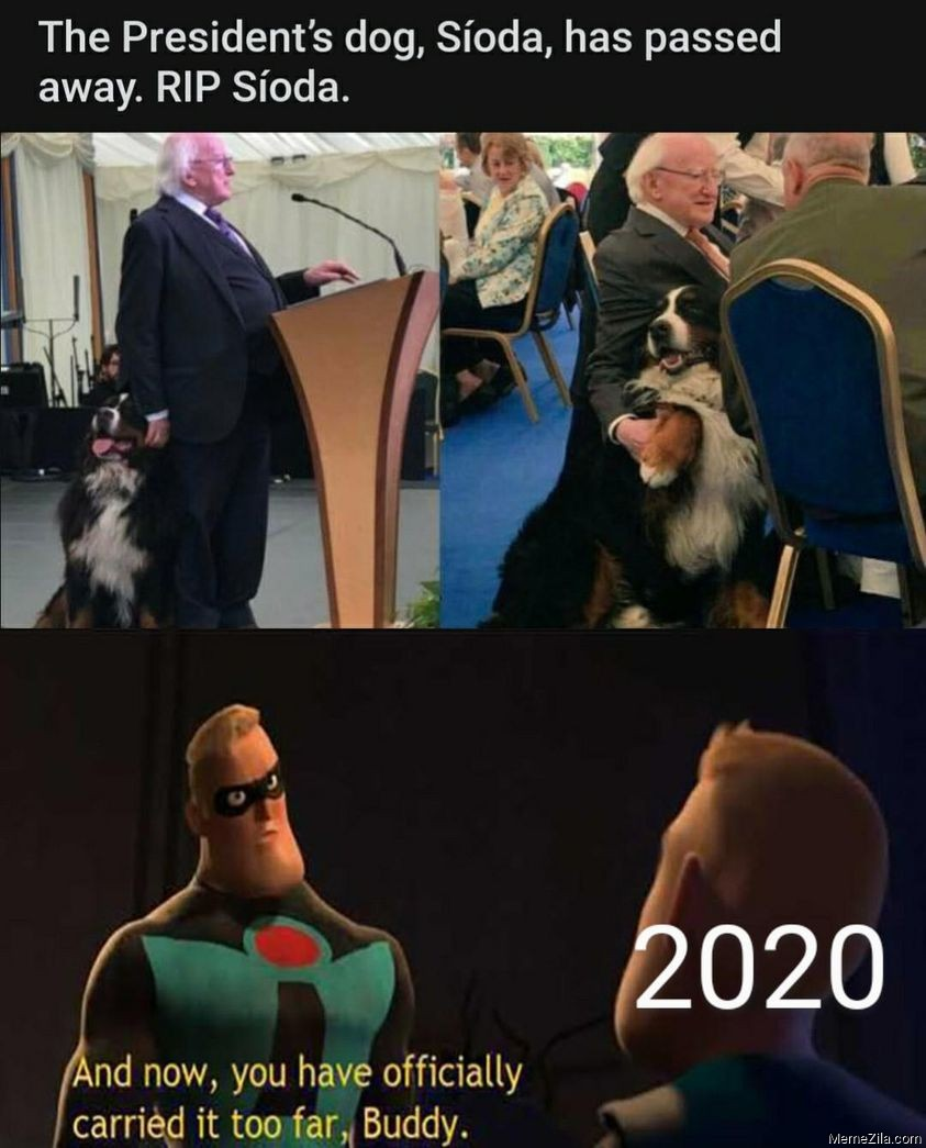 The presidents dog Sioda has passed away Rip Sioda And now you have officially carried it too far Buddy 2020 meme