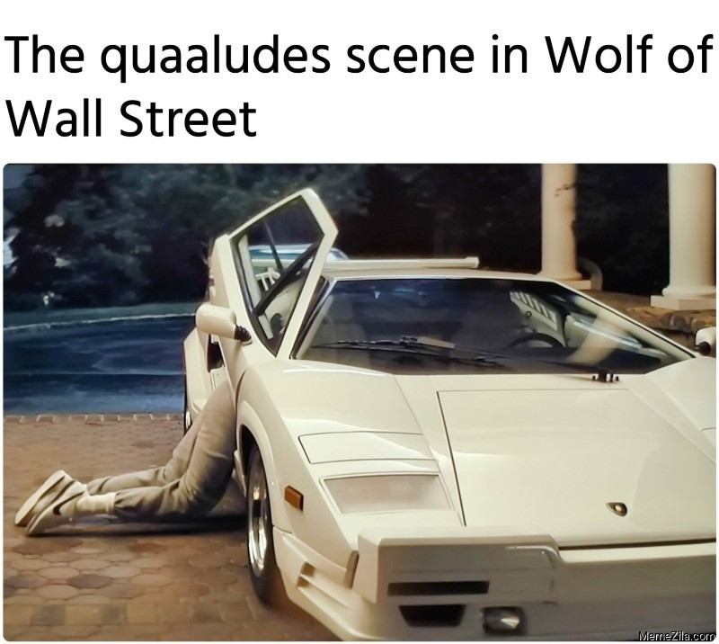 The quaaludes scene in Wolf of Wall Street meme