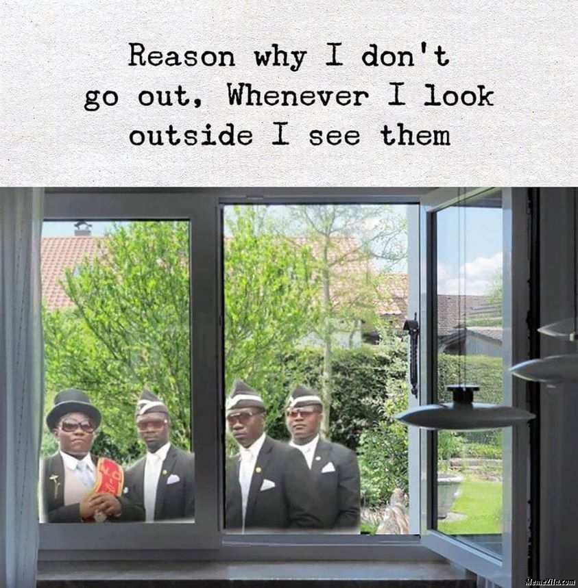 The reason why I dont go outside Whenever I look outside I see them meme
