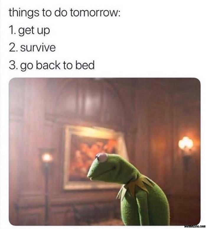 Things to do tomorrow Get up Survive Go to the bed meme