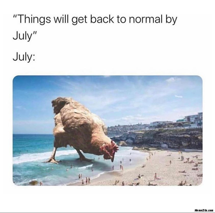 Things will get back to normal by july Meanwhile july meme