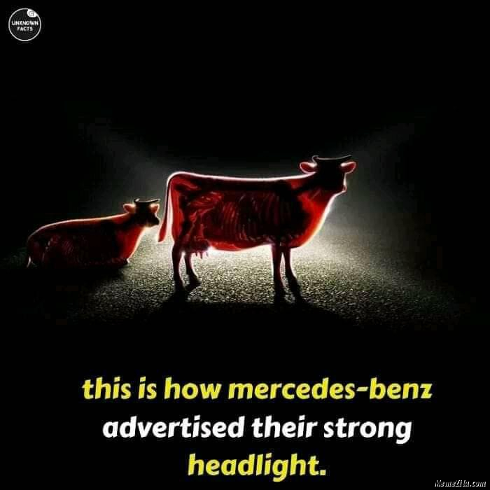 This is how Mercedes benz advertised their strong headlight meme