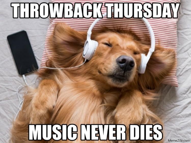 Throwback thursday Music never dies dog meme