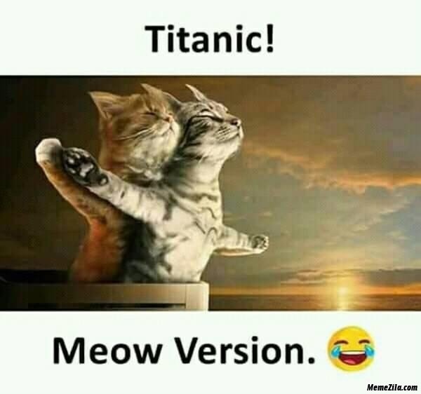 Titanic meow version meme
