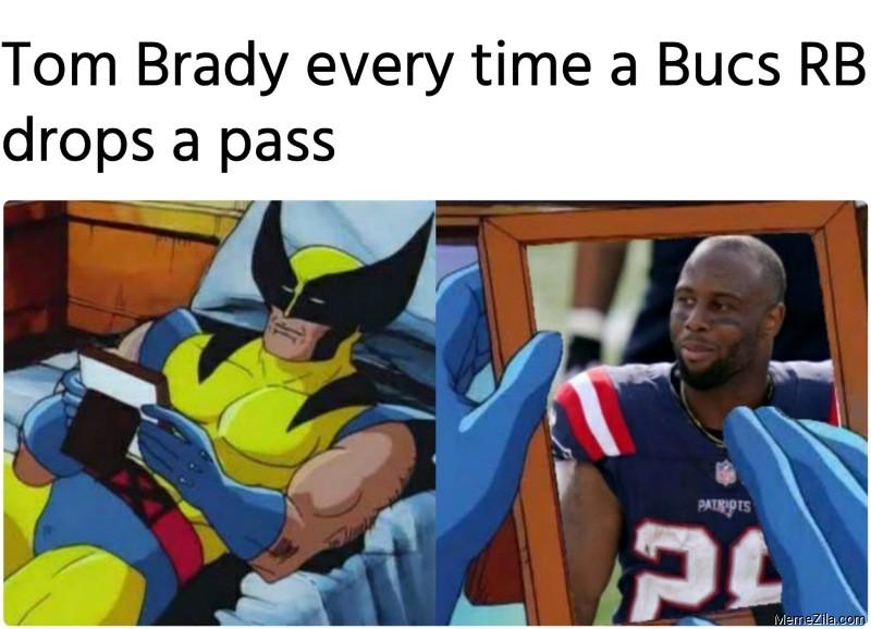 Tom Brady every time a Bucs RB drops a pass meme