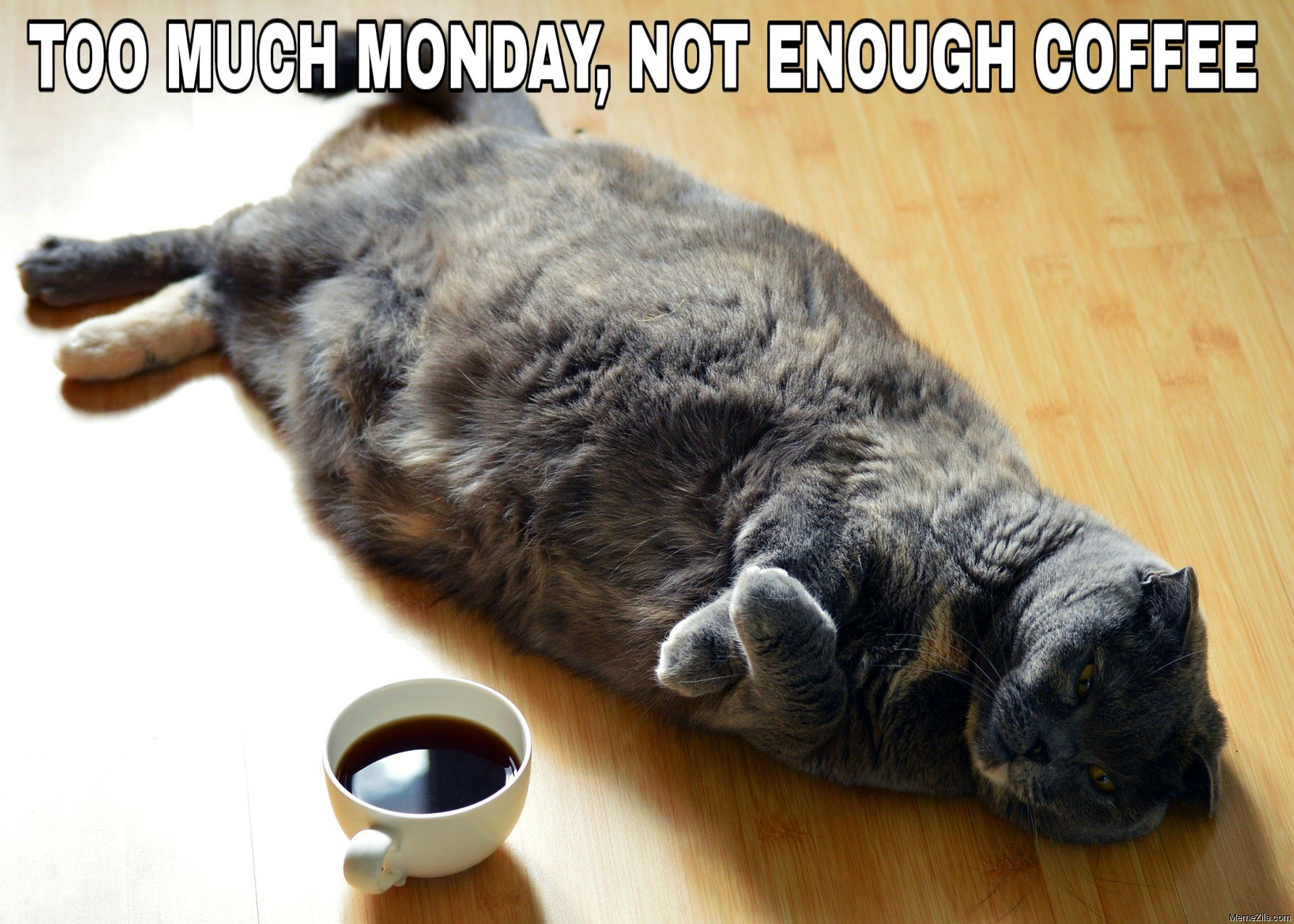 Too much monday Not enough coffee meme