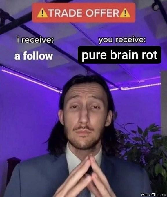 Trade Offer I receive a follow You receive pure brain rot meme
