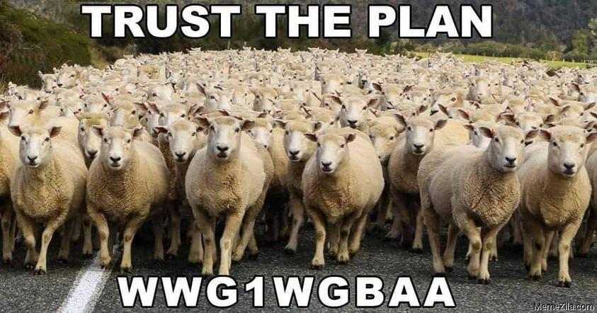 Trust the plan wwg1wgbaa meme