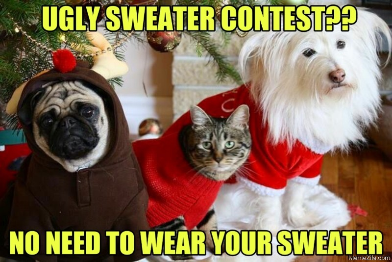 Ugly sweater contest No need to wear your sweater meme