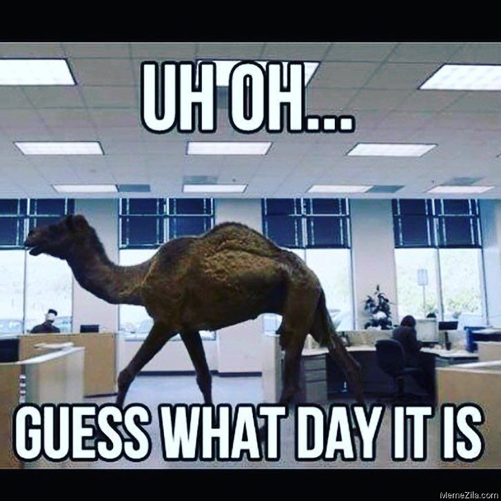 Uh Oh Guess what day it is meme
