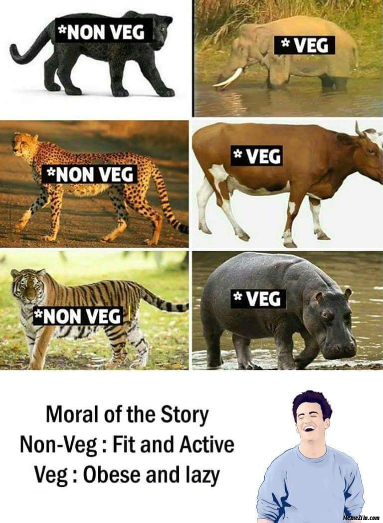 Veg vs Non veg Non veg fit and active Veg obese and lazy meme