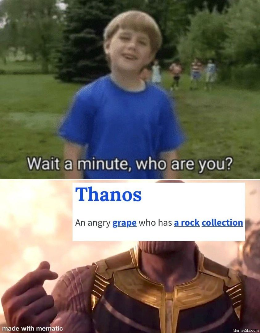 Wait a minute who are you Thanos An angry grape who has a rock collection meme
