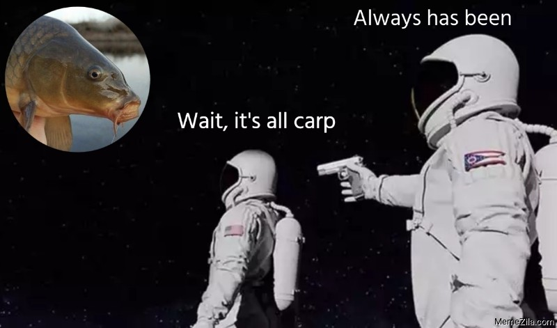 Wait its all carp Always has been meme