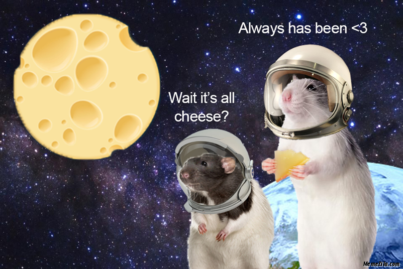 Wait its all cheese Always has been meme