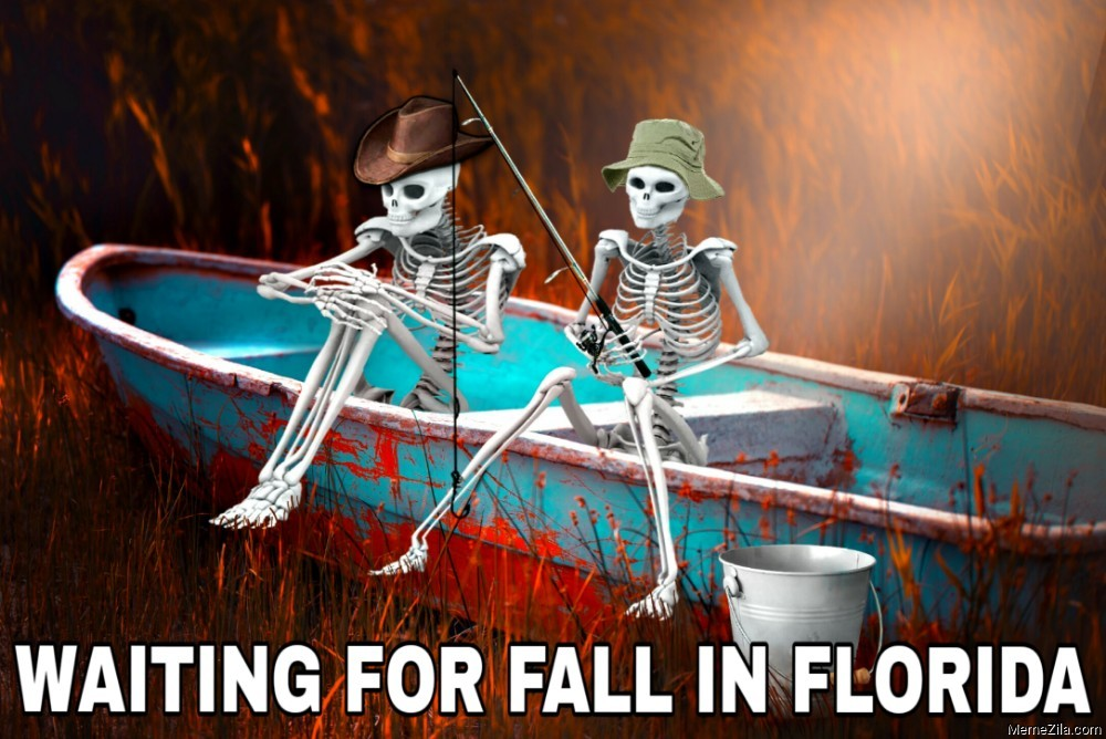 Waiting for fall in Florida meme