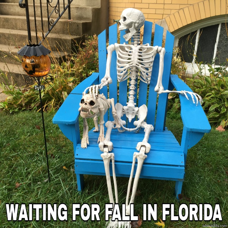 Waiting for fall in Florida skeleton meme