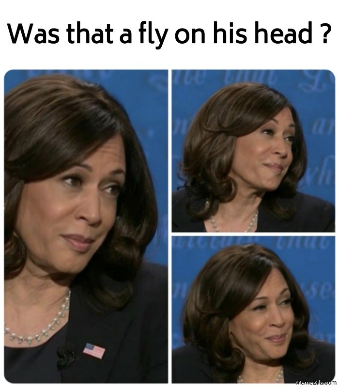 Was that a fly on his head meme