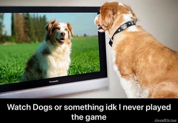Watch dogs or something idk I never played the game meme