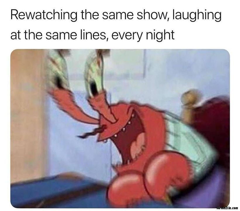 Watching the same show Laughing at the same lines Every night meme