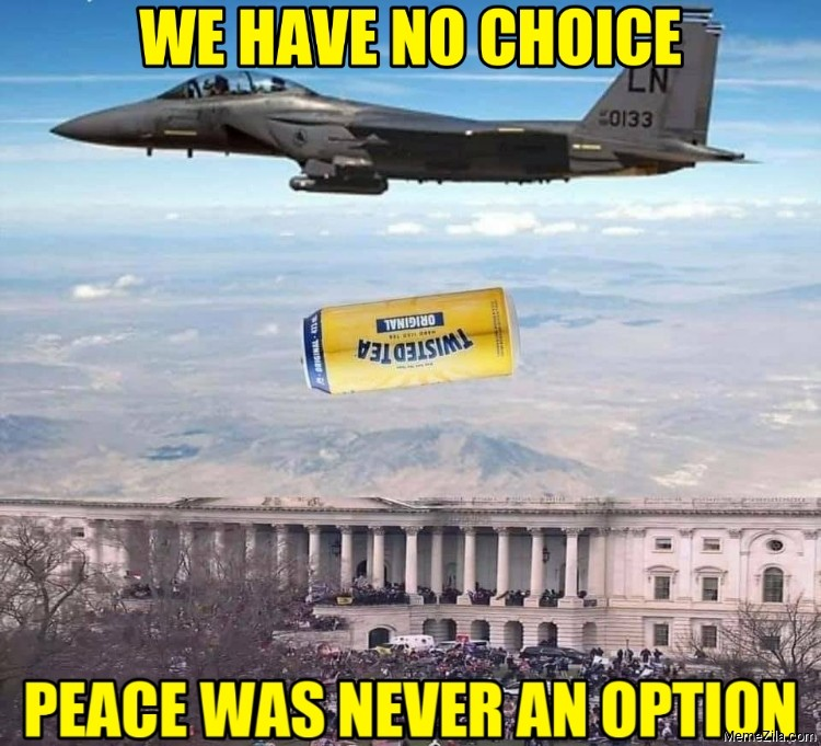 We have no choice Peace was never an option meme