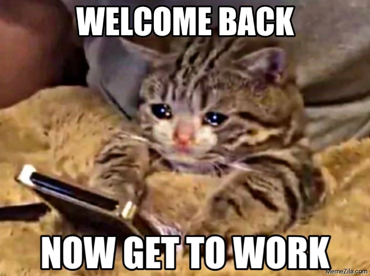 Welcome back Now get to work meme