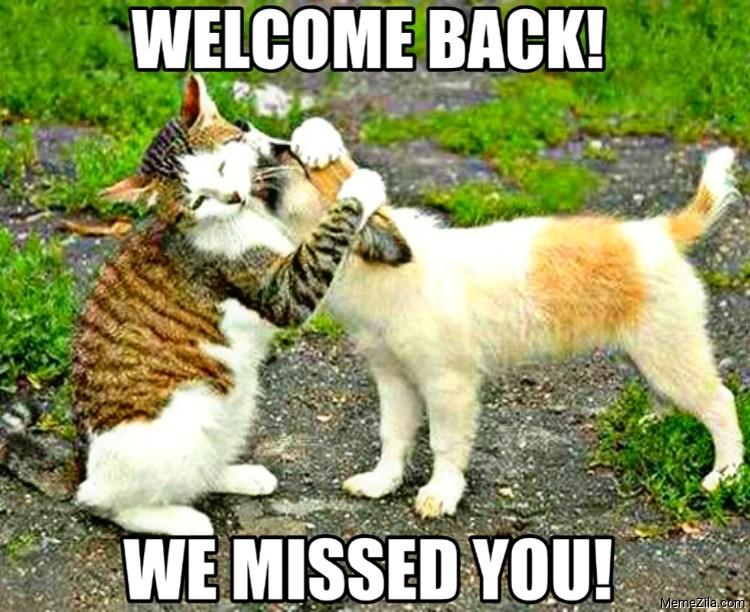 Welcome back We missed you meme