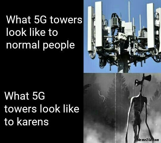 What 5G towers look like to normal people vs What 5G towers look like to karens meme