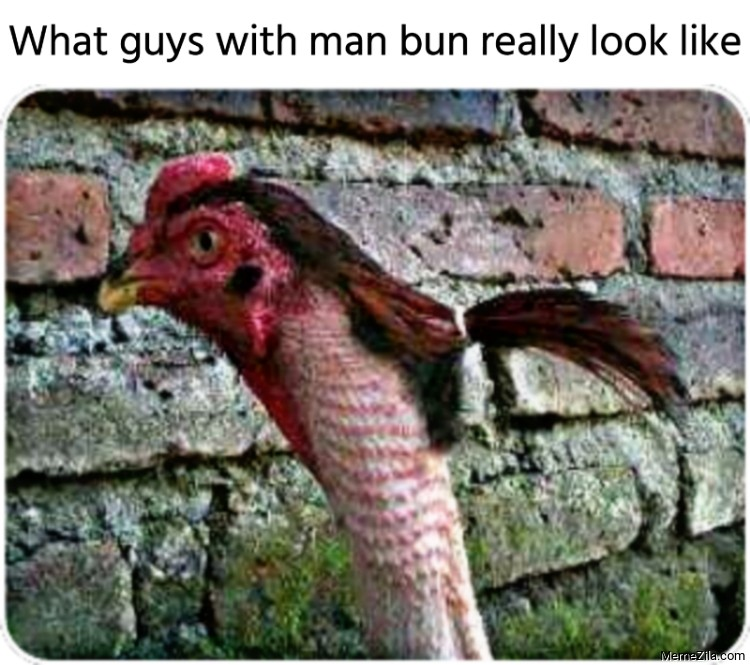 What guys with man bun really look like Chicken with ponytail meme