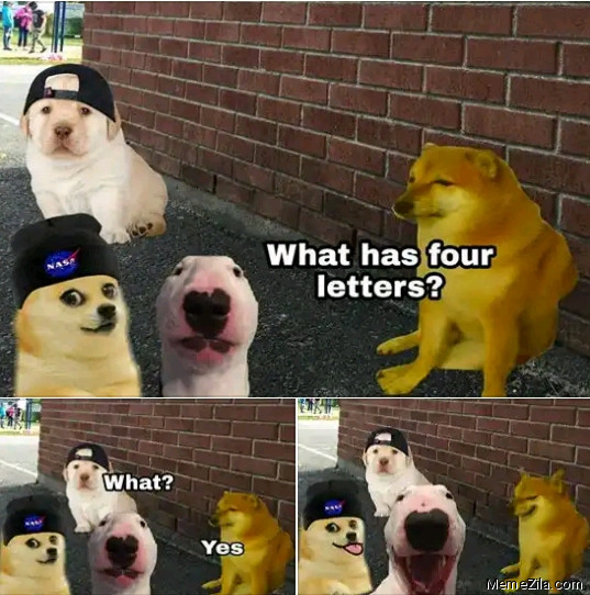 What has four letters What Yes meme