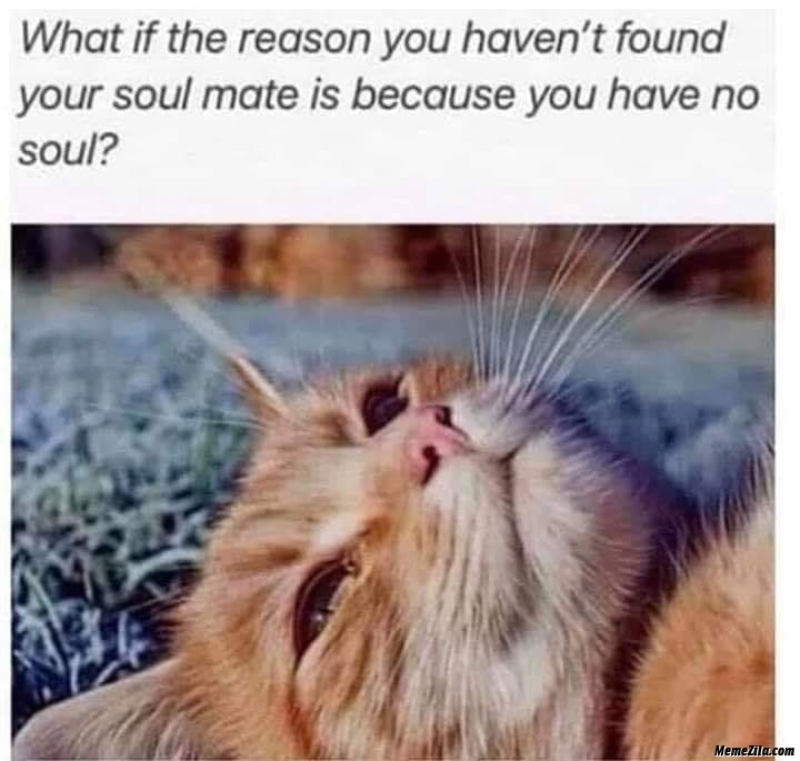 What if the reason for you havent found your soul mate is because you have no soul meme